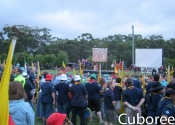 cuboree-0449