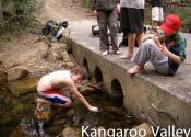 kangaroo-valley-06