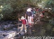 kangaroo-valley-10