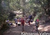 kangaroo-valley-11