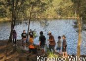kangaroo-valley-2283